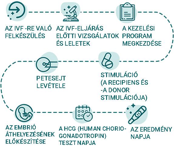 infoinfografic